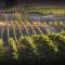 Pinot Noir, Keeler Estate Vineyard, Eaola-Amity Hills, Authentique, 2016