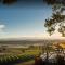 Pinot Noir, Eaola Springs Vineyard Saint Augustine, Eaola-Amity Hills, Authentique, 2016