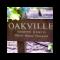 Cabernet Sauvignon, Dante´s Block, Oakville, Napa Valley, Hoopes, 2015